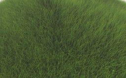 Grönt gräs stock illustrationer