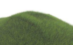 Grönt gräs royaltyfri illustrationer