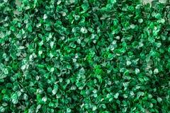 Grönt gräs av plast- lämnar väggtextur för bakgrund, Fotografering för Bildbyråer