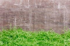Grönt gräs framme av en träbakgrund tillgänglig hälsning för korteaster eps mapp kopiera avstånd Arkivbild