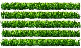 Grönt gräs, genomskinlig bakgrund för PNG Fotografering för Bildbyråer