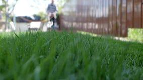 Grönt gräs i förgrunden och man med gräsklipparen som att närma sig i bakgrunden Lowen metar skjutit lager videofilmer