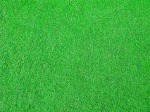 Grönt gräs, konstgjord beläggning för det fria och inomhus Arkivfoton