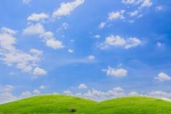 Grönt gräs med den ljusa himlen. Royaltyfri Fotografi