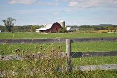 Grönt gräs med den trästaketet och ladugården Royaltyfria Bilder
