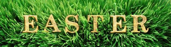 Grönt gräs med ordpåsken i ljusa guld- bokstäver royaltyfri fotografi