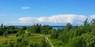 Grönt gräs och baltiskt hav Arkivfoto