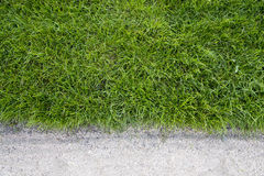 Grönt gräs och sand Royaltyfria Foton