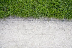 Grönt gräs och sand Royaltyfri Fotografi