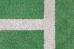 Grönt gräs och vitremsa Royaltyfria Bilder