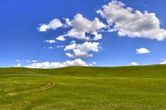 Grönt gräs på kullen och molnen Royaltyfria Foton
