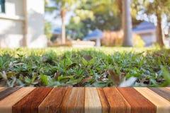Grönt gräs på suddig bakgrund för wood tabell Arkivfoto
