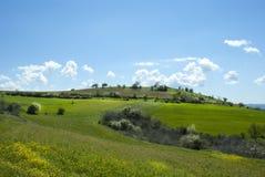 Grönt gräs sätter in landskap med fantastiska moln Arkivfoto