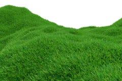 Grönt gräs som växer på kullar med bästa sikt för vit bakgrund framförande 3d Arkivfoto