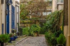 Grönt hörn nära huset med den blåa dörren Royaltyfria Bilder