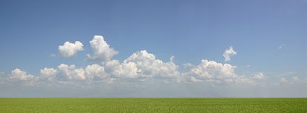 grönt hav Arkivbild