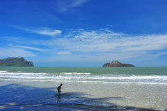 Grönt hav med den blåa himlen Royaltyfri Fotografi