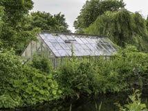 Grönt hus bak gröna växter Arkivfoton