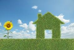 grönt hus för gräs royaltyfri fotografi