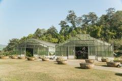 Grönt hus på växtfält Royaltyfri Bild