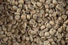 Grönt kaffe Bean Sampler Vintage Origins Selections Royaltyfri Fotografi