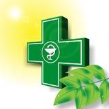 Grönt läkarundersökningkorsemblem royaltyfri illustrationer