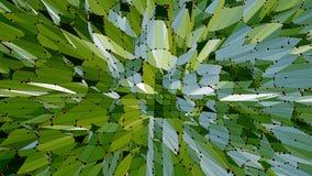 Grönt lågt poly vinka för bakgrund Abstrakt låg poly yttersida som teknologibakgrund i stilfull låg poly design vektor illustrationer