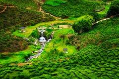 grönt land Arkivfoto