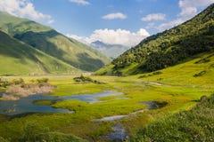 Grönt landskap för sommar för Kaukasus berg Royaltyfri Bild