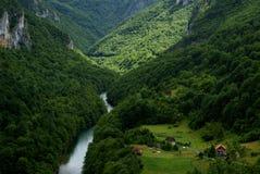 Grönt landskap i Montenegro Royaltyfri Fotografi