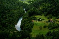 Grönt landskap i Montenegro fotografering för bildbyråer