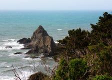 Grönt landskap längs den kust- vägen - rutt för upptäckt för huvudväg 1 för vägtur ner Royaltyfri Foto