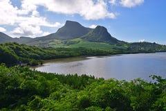 Grönt landskap med kust- mangrovar vatten och Lion Mountain närliggande Mahebourg, Mauritius Arkivbild
