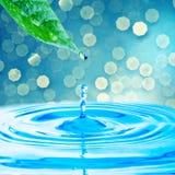 grönt leafvatten för droppe Fotografering för Bildbyråer