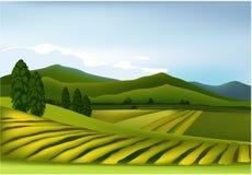 grönt liggandeberg Arkivbild