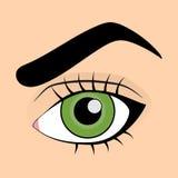 grönt mänskligt makroskytte för öga vektor illustrationer