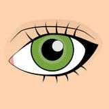 grönt mänskligt makroskytte för öga stock illustrationer
