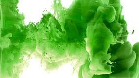 Grönt moln av färgpulver Royaltyfria Bilder