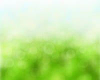 grönt naturligt för bakgrund Arkivfoton