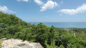 Grönt naturligt karibiskt landskap lager videofilmer