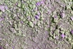 Grönt och purpurfärgat salt för tappning som torkas på liten stentextur Arkivbilder