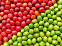 Grönt och rött kaffe Beens arkivbild