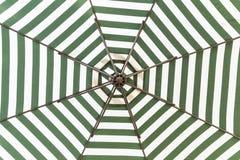 Grönt och vitt paraply royaltyfri foto