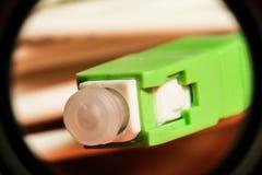 Grönt optiskt kontaktdon för optisk fiber, abstrakt bakgrund Royaltyfria Bilder