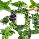 Grönt organiskt tecken Arkivbild
