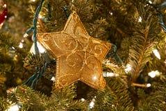 Grönt pälsträd som dekoreras av en guld- kulör stjärna arkivfoto