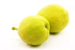 Grönt päron Royaltyfri Bild