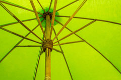 Grönt paraply Royaltyfri Fotografi