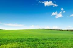 grönt pittoreskt för fält royaltyfri fotografi