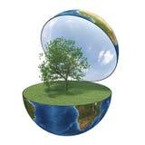 grönt planet för jord Royaltyfri Bild